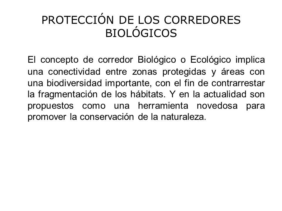 PROTECCIÓN DE LOS CORREDORES BIOLÓGICOS
