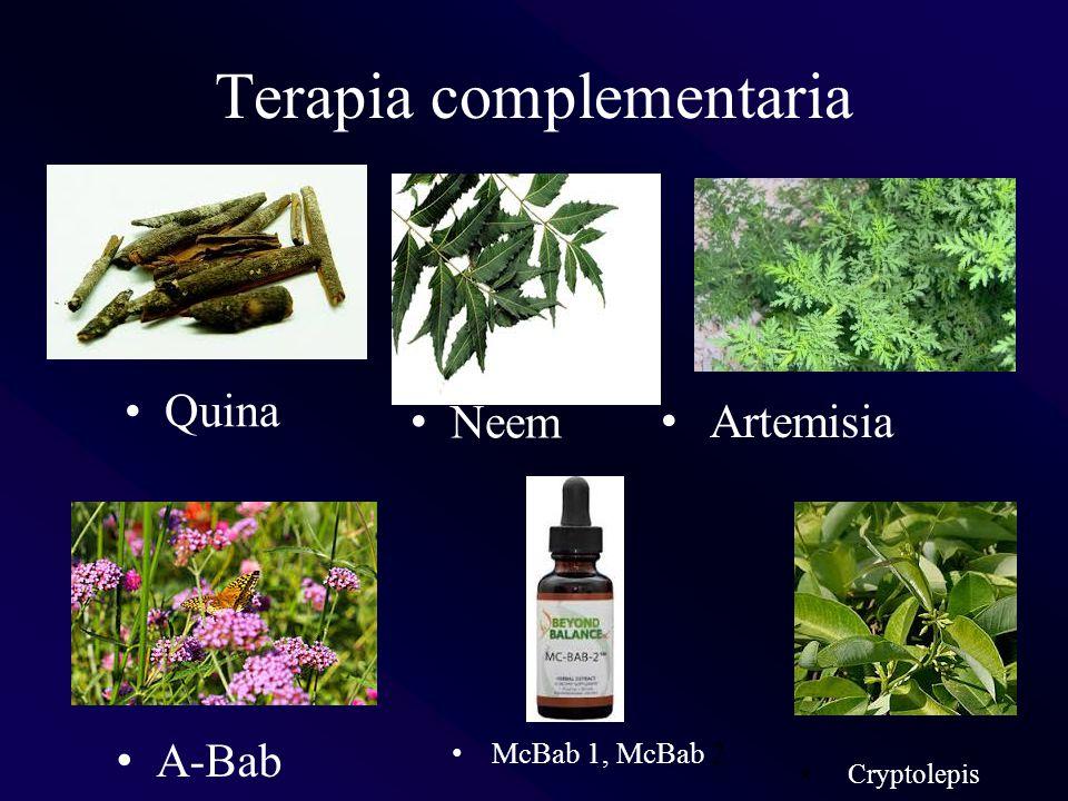 Terapia complementaria
