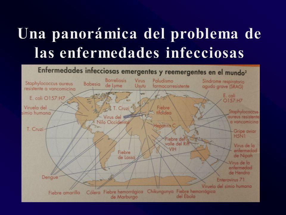 Una panorámica del problema de las enfermedades infecciosas