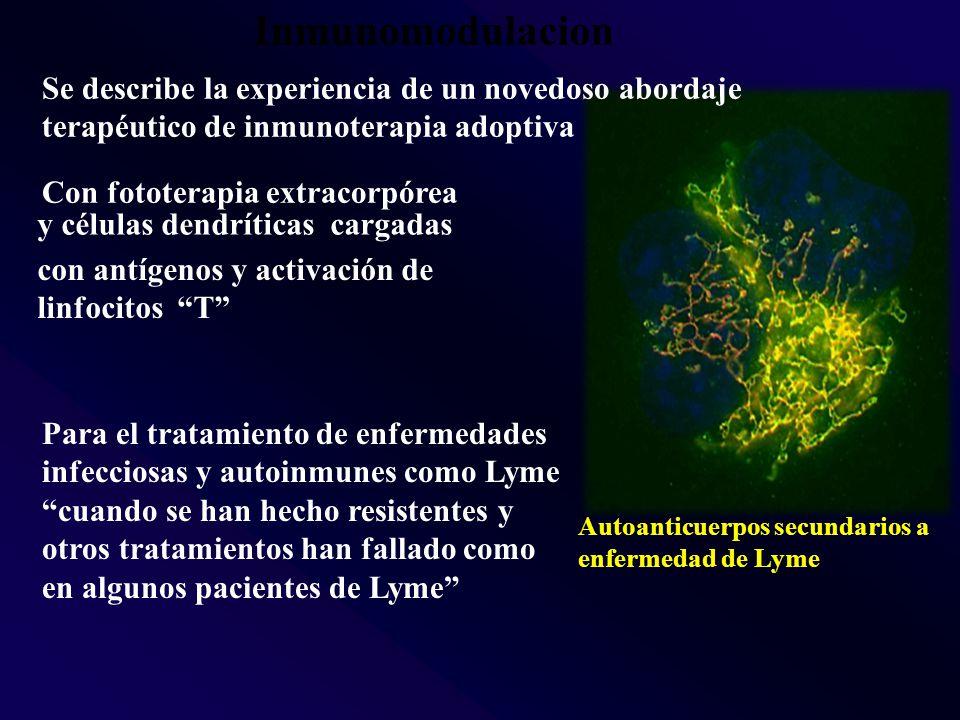 Inmunomodulacion Se describe la experiencia de un novedoso abordaje terapéutico de inmunoterapia adoptiva.