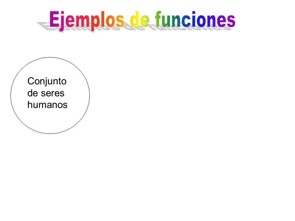 Ejemplos de funciones Conjunto de seres humanos