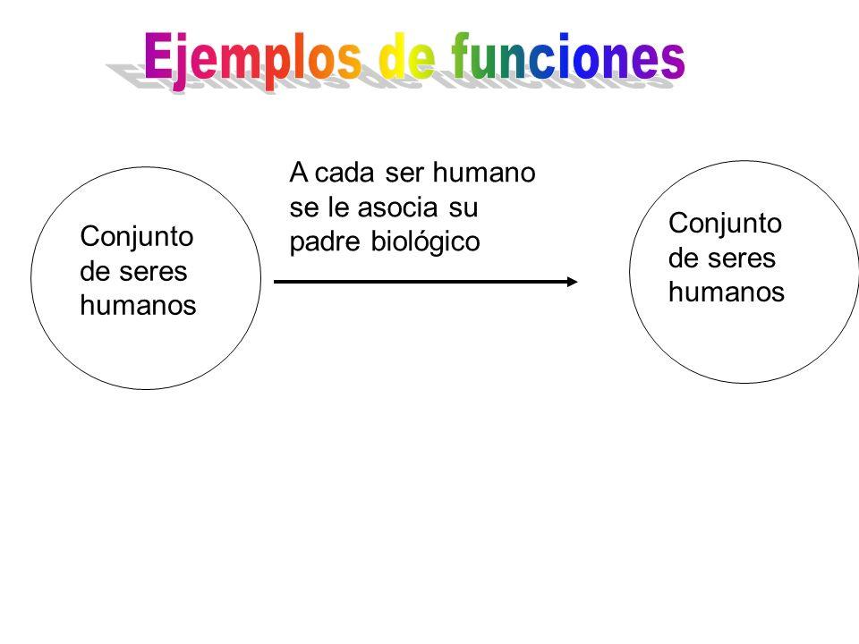 Ejemplos de funciones A cada ser humano se le asocia su padre biológico. Conjunto de seres humanos.