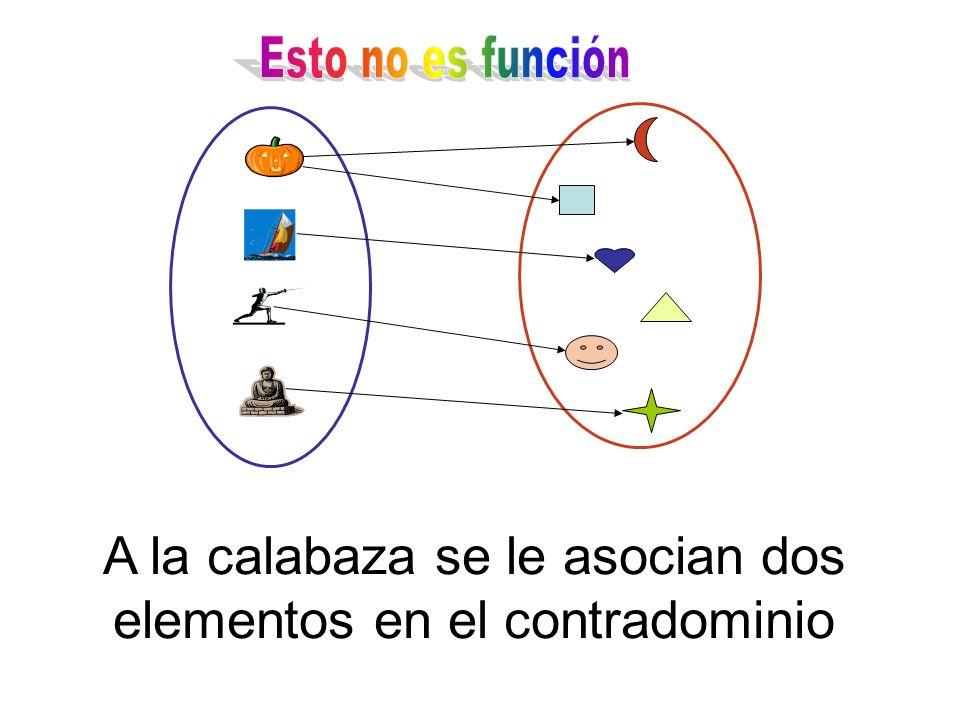 A la calabaza se le asocian dos elementos en el contradominio