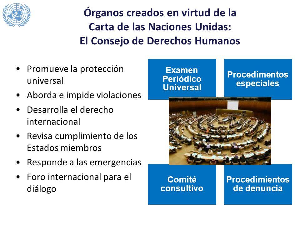 Órganos creados en virtud de la Carta de las Naciones Unidas: