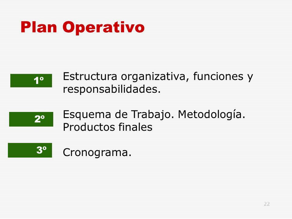 Plan Operativo Estructura organizativa, funciones y responsabilidades.