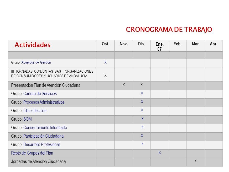 CRONOGRAMA DE TRABAJO Actividades