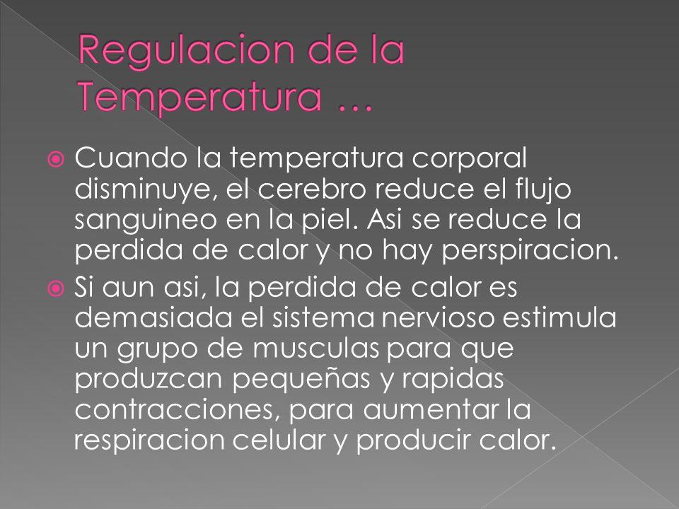 Regulacion de la Temperatura …