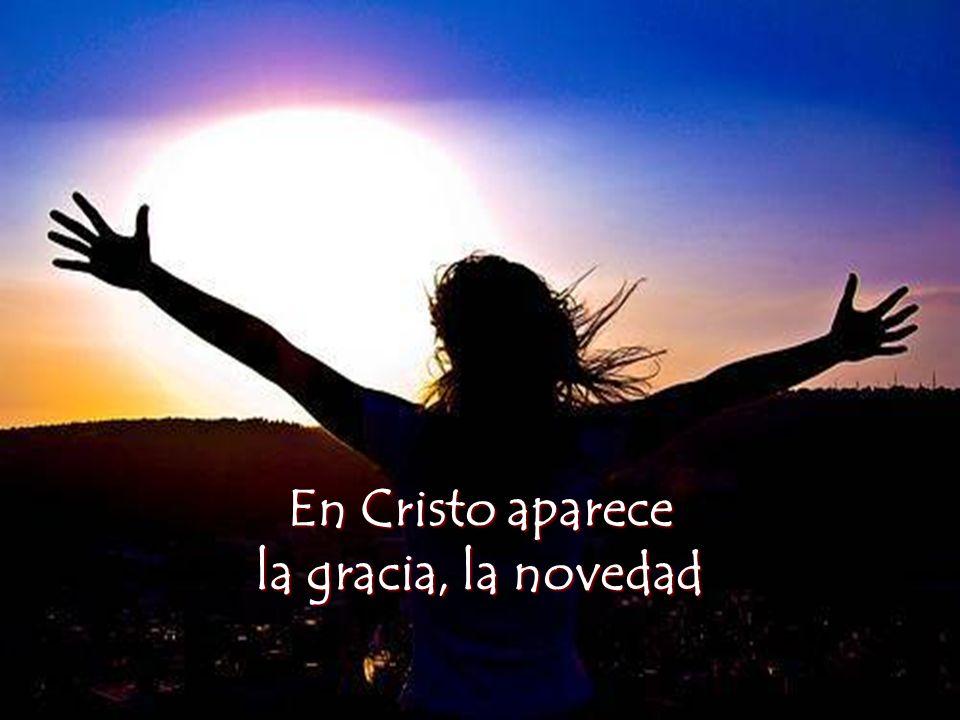 En Cristo aparece la gracia, la novedad