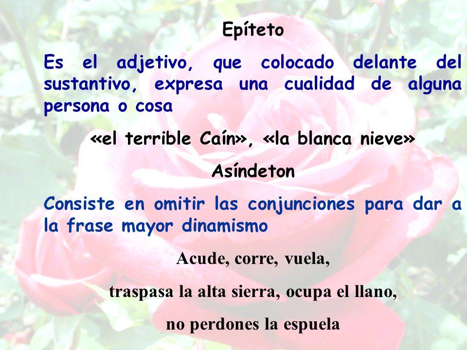«el terrible Caín», «la blanca nieve» Asíndeton