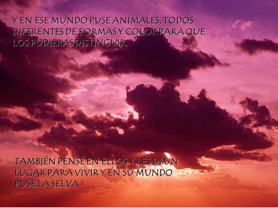 Y EN ESE MUNDO PUSE ANIMALES, TODOS DIFERENTES DE FORMAS Y COLOR PARA QUE LOS PUDIERAS DISTINGUIR,
