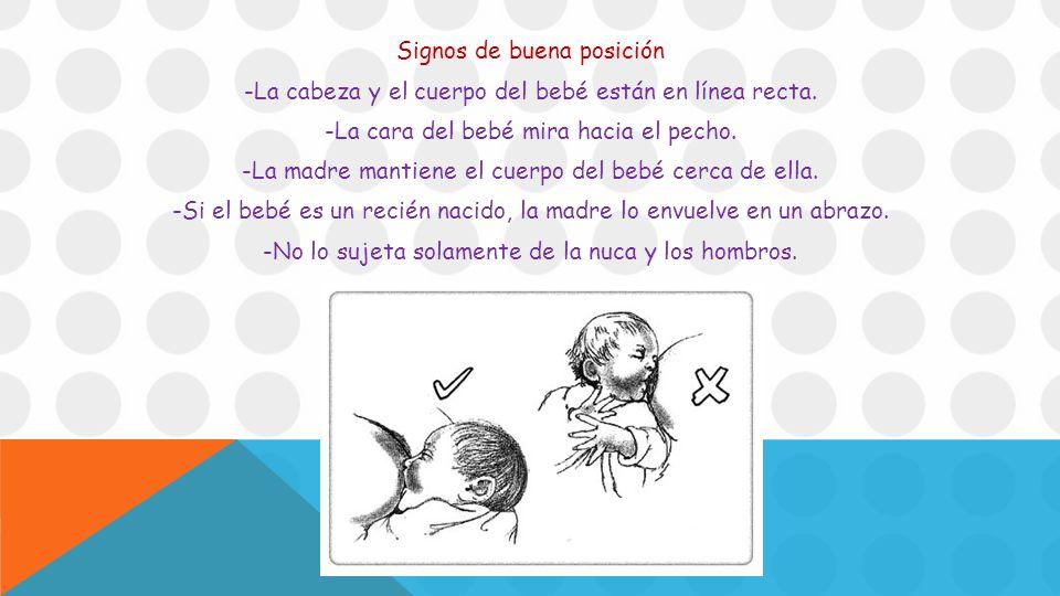 Signos de buena posición -La cabeza y el cuerpo del bebé están en línea recta.