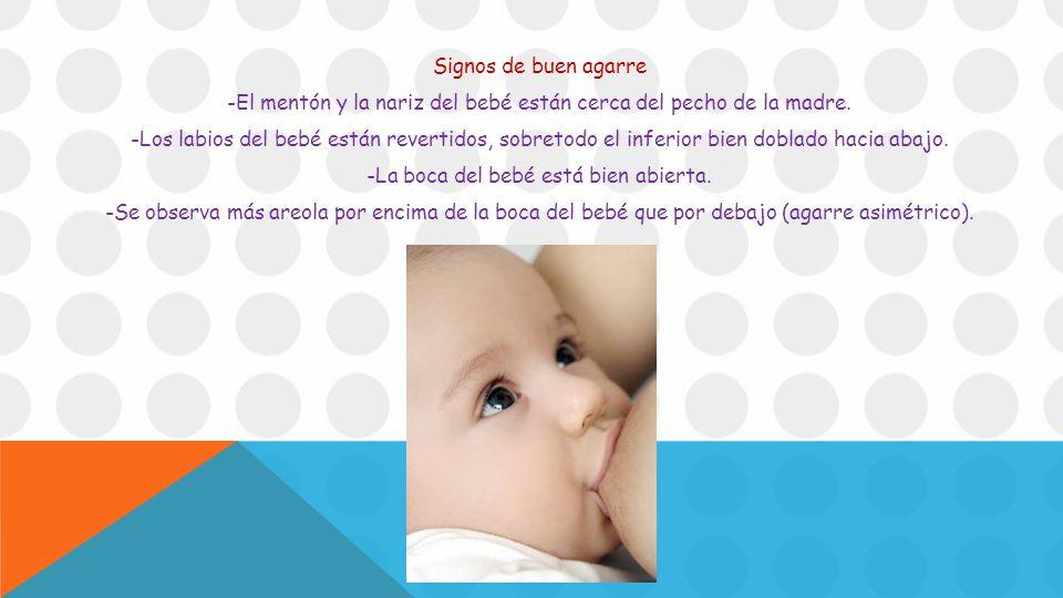 Signos de buen agarre -El mentón y la nariz del bebé están cerca del pecho de la madre.