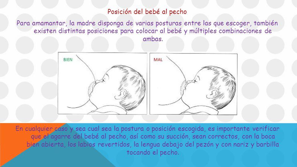 Posición del bebé al pecho Para amamantar, la madre disponga de varias posturas entre las que escoger, también existen distintas posiciones para colocar al bebé y múltiples combinaciones de ambas.