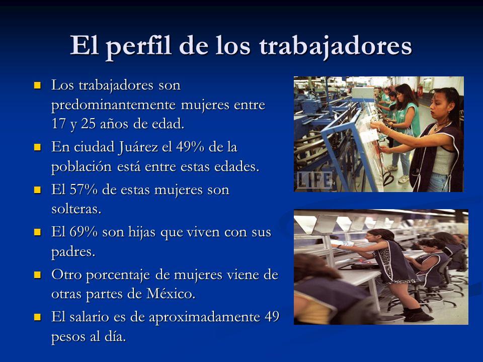 El perfil de los trabajadores