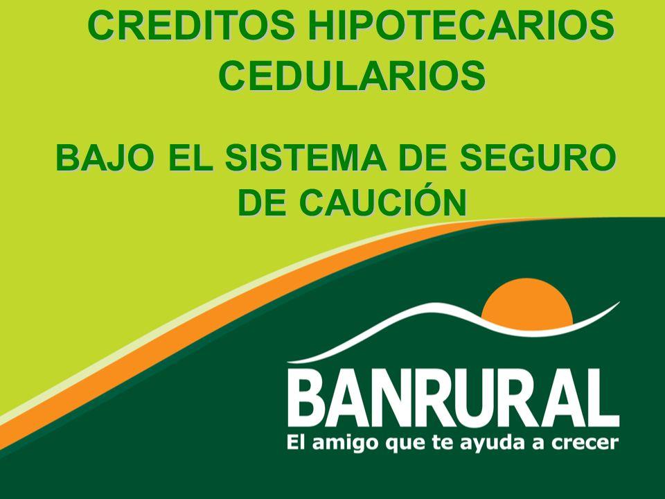 CREDITOS HIPOTECARIOS CEDULARIOS BAJO EL SISTEMA DE SEGURO DE CAUCIÓN