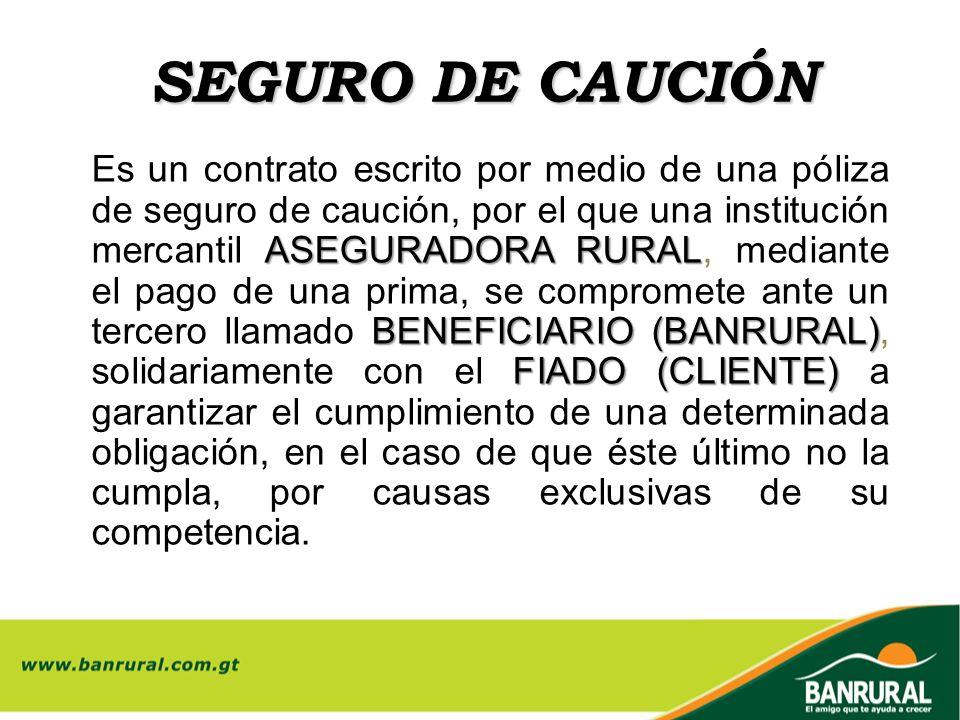 SEGURO DE CAUCIÓN