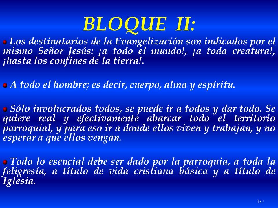 BLOQUE II: A todo el hombre; es decir, cuerpo, alma y espíritu.