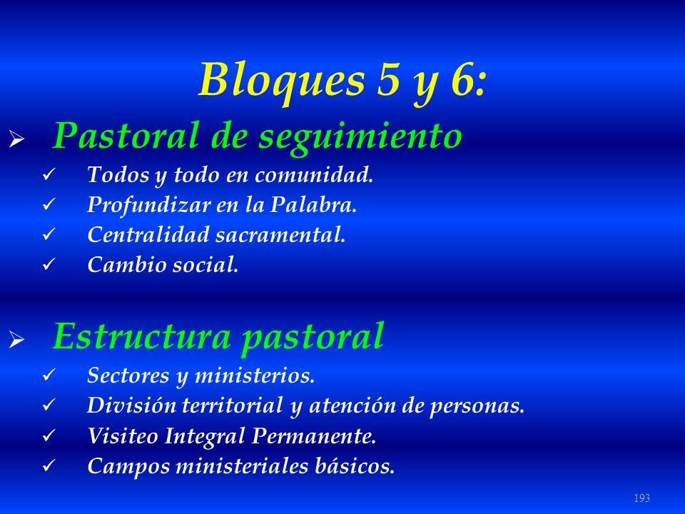 Bloques 5 y 6: Pastoral de seguimiento Estructura pastoral