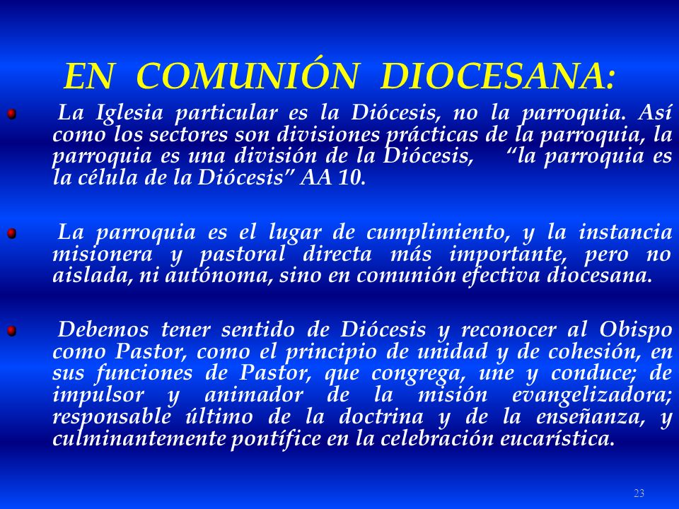 EN COMUNIÓN DIOCESANA: