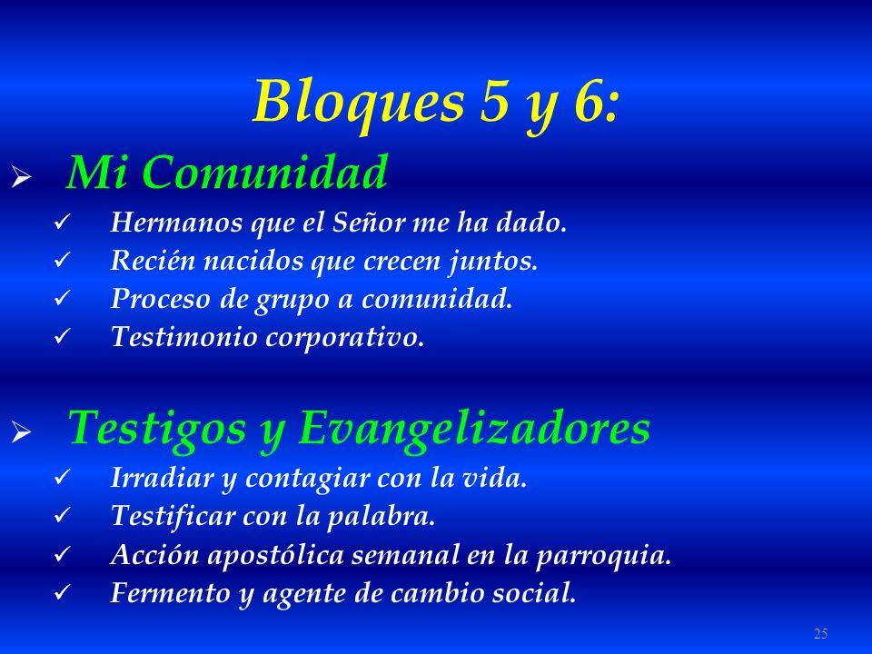 Bloques 5 y 6: Mi Comunidad Testigos y Evangelizadores