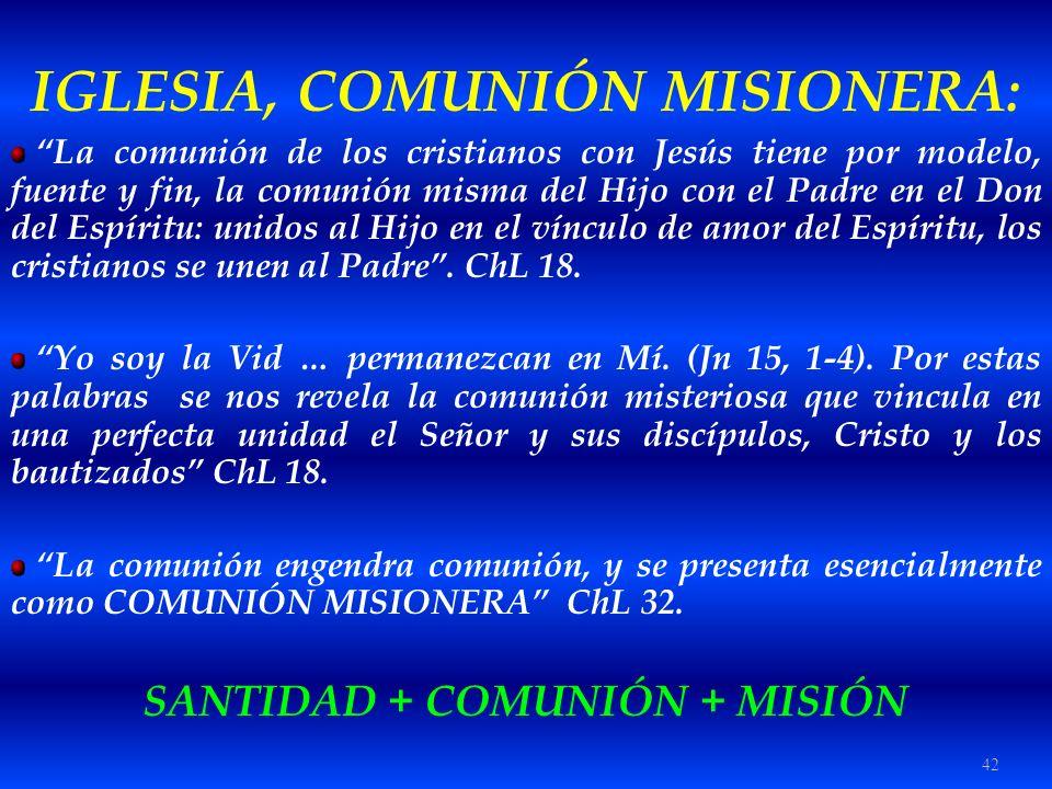 IGLESIA, COMUNIÓN MISIONERA: SANTIDAD + COMUNIÓN + MISIÓN