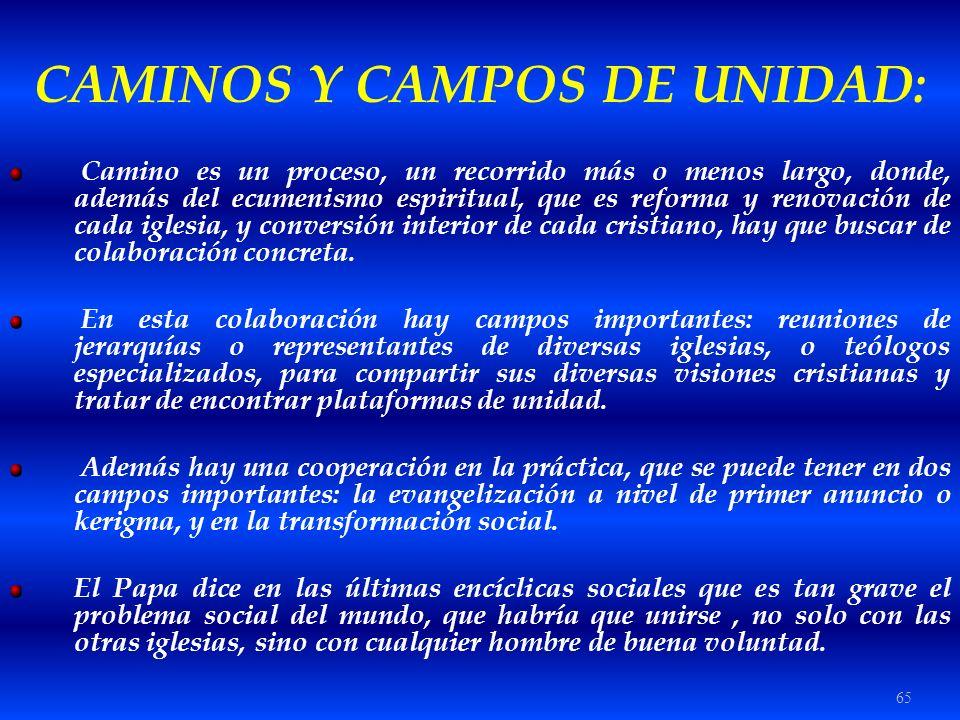 CAMINOS Y CAMPOS DE UNIDAD: