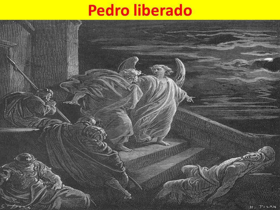 Pedro liberado