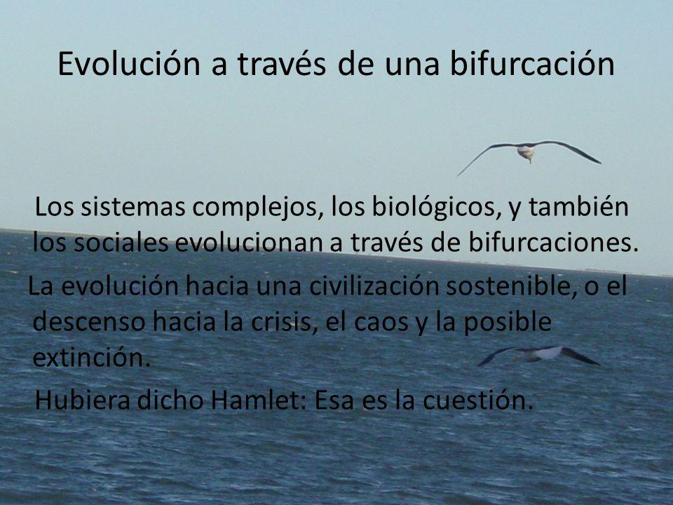 Evolución a través de una bifurcación