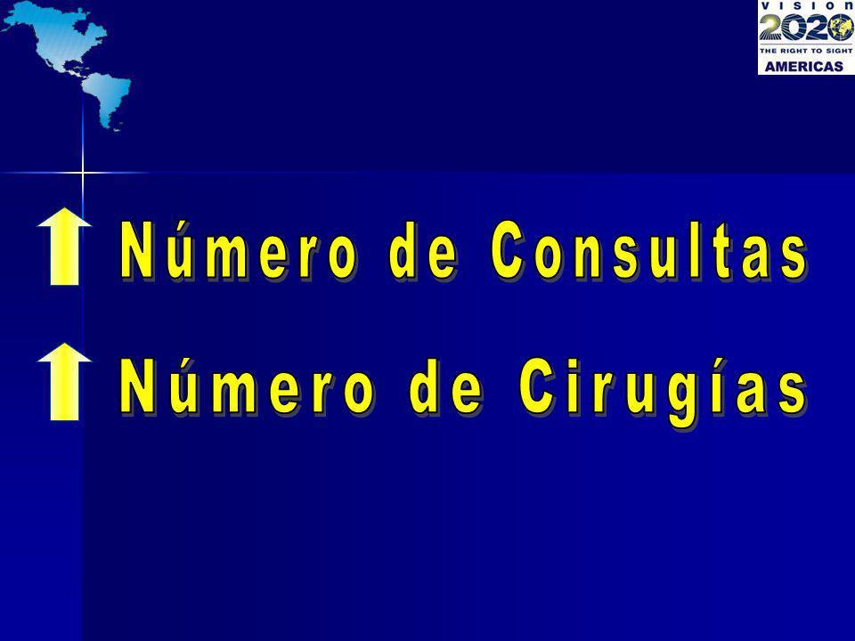 Número de Consultas Número de Cirugías