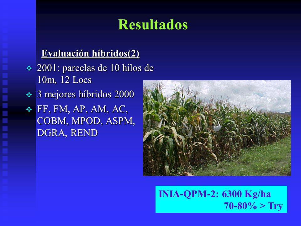 Evaluación híbridos(2)