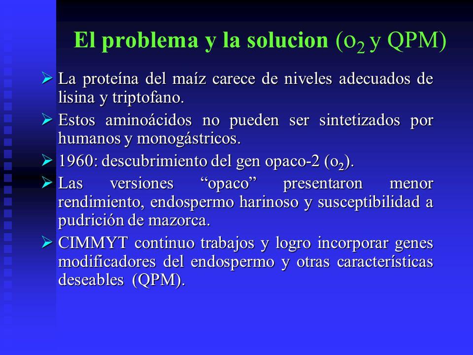 El problema y la solucion (o2 y QPM)