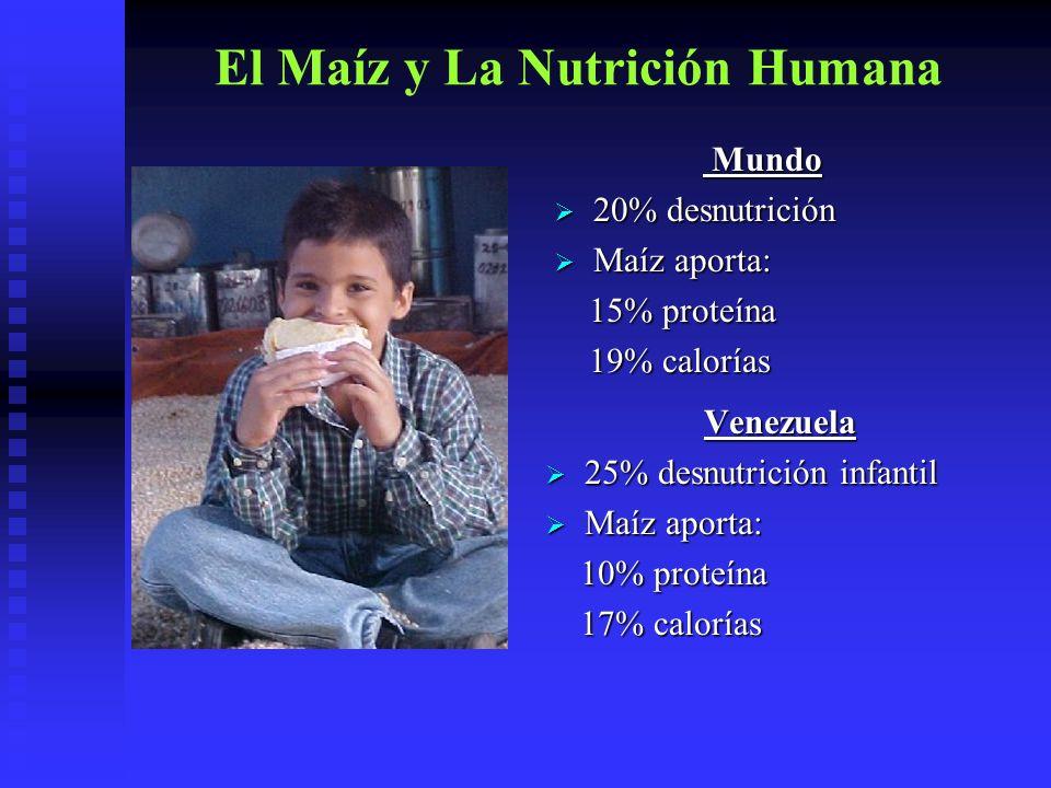 El Maíz y La Nutrición Humana
