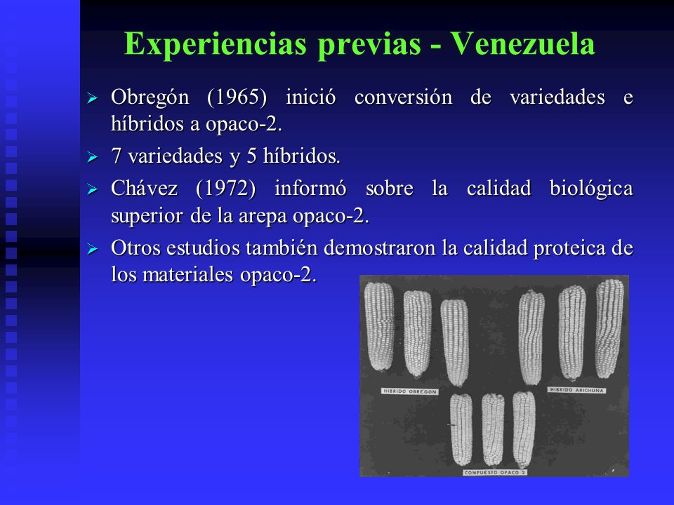Experiencias previas - Venezuela