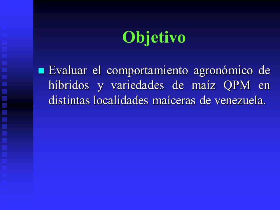 Objetivo Evaluar el comportamiento agronómico de híbridos y variedades de maíz QPM en distintas localidades maíceras de venezuela.