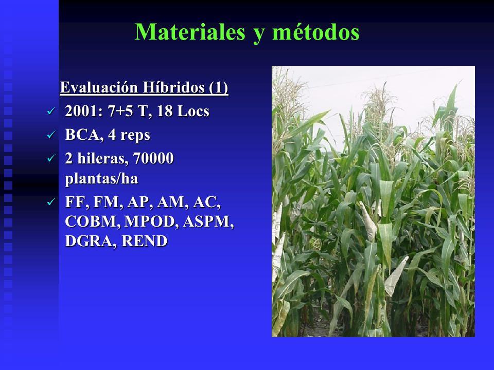 Evaluación Híbridos (1)