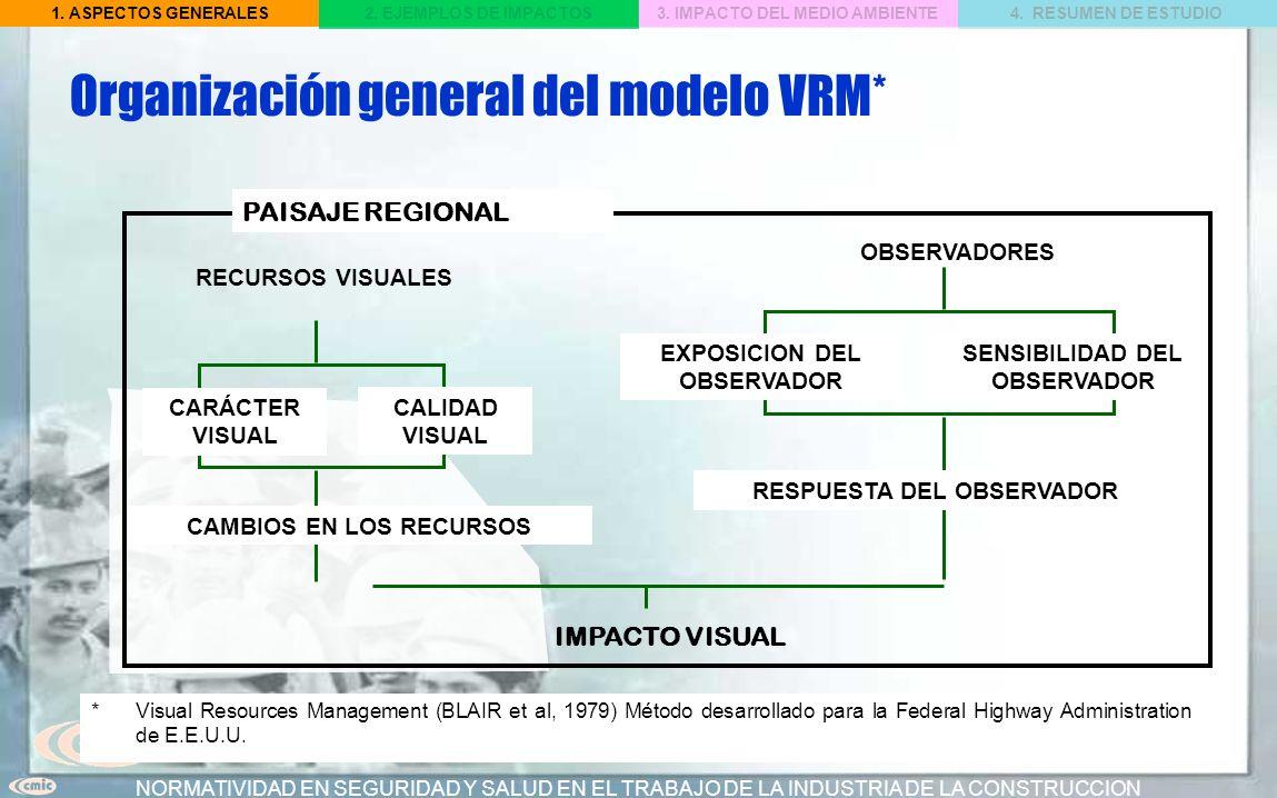 Organización general del modelo VRM*