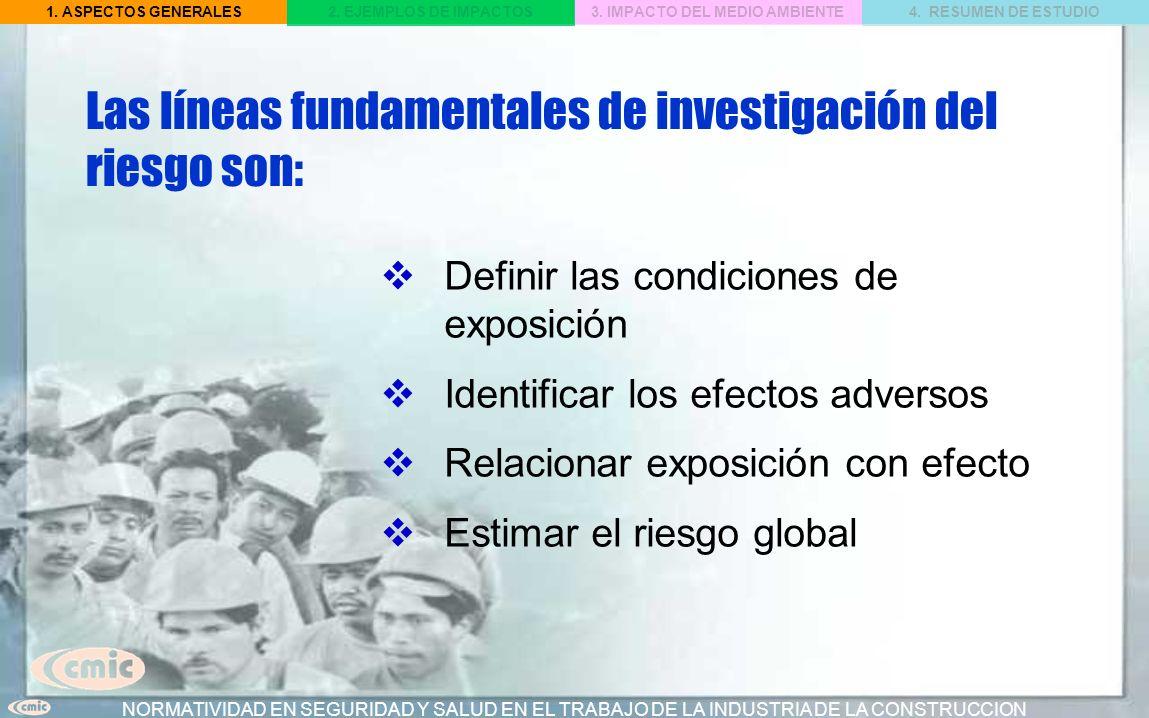 Las líneas fundamentales de investigación del riesgo son: