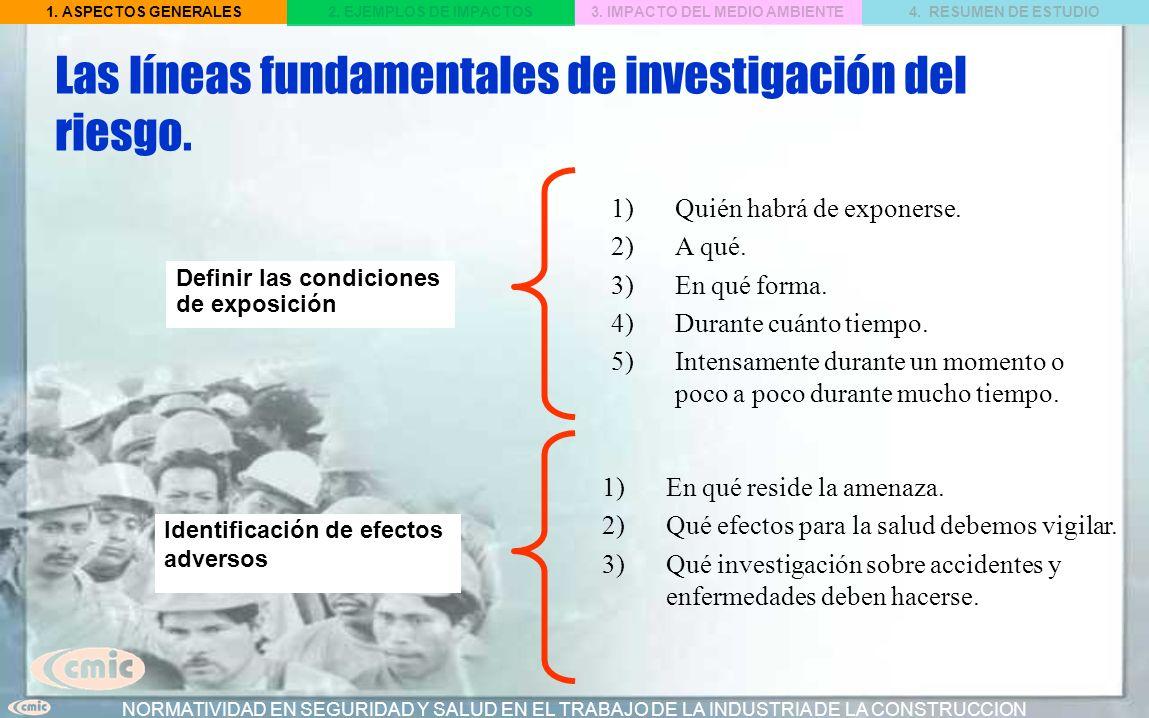 Las líneas fundamentales de investigación del riesgo.