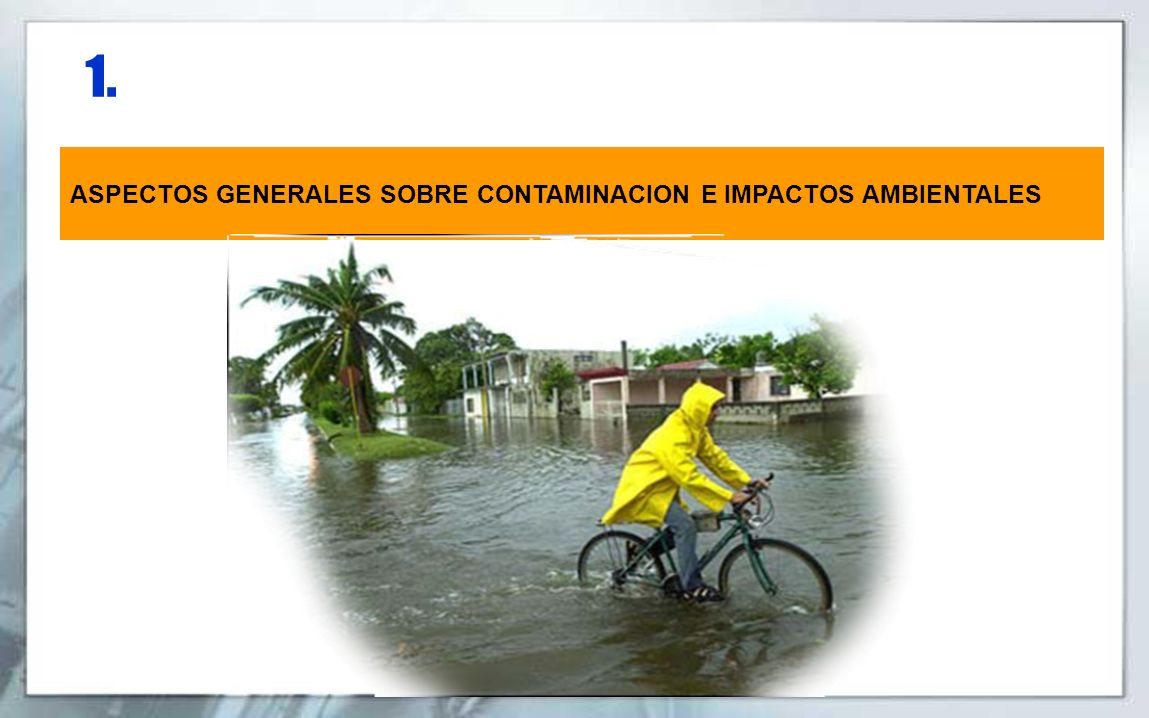 1. ASPECTOS GENERALES SOBRE CONTAMINACION E IMPACTOS AMBIENTALES