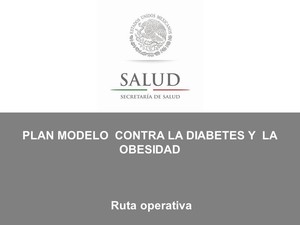 PLAN MODELO CONTRA LA DIABETES Y LA OBESIDAD
