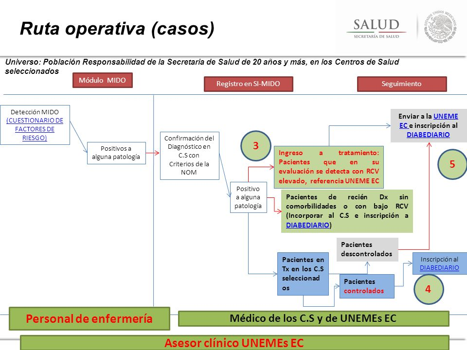 Ruta operativa (casos)