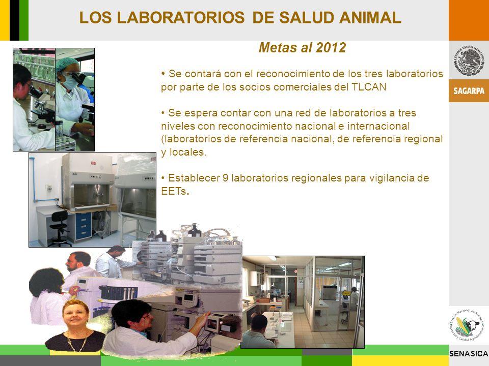 LOS LABORATORIOS DE SALUD ANIMAL
