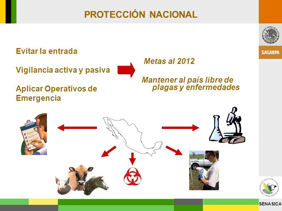 PROTECCIÓN NACIONAL Evitar la entrada Vigilancia activa y pasiva