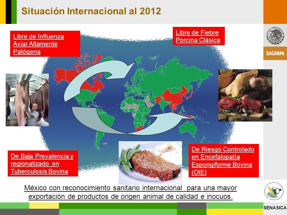 Situación Internacional al 2012