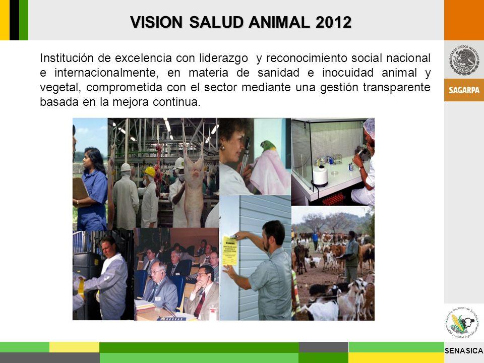 VISION SALUD ANIMAL 2012