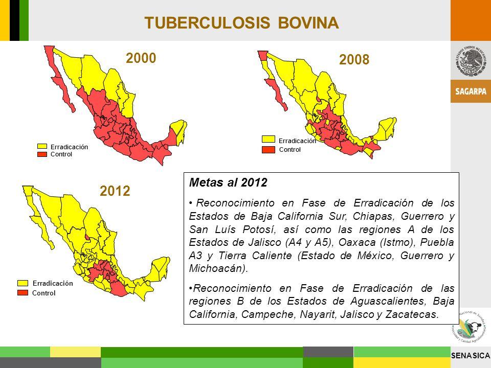 TUBERCULOSIS BOVINA 2000 2008 2012 Metas al 2012