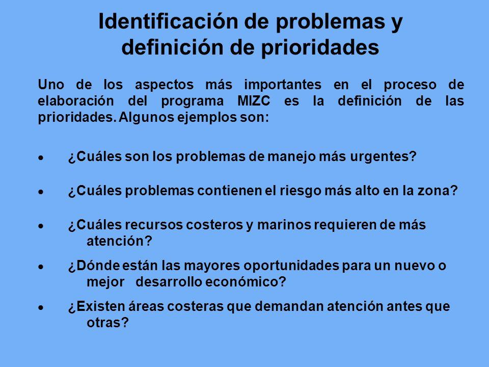 Identificación de problemas y definición de prioridades