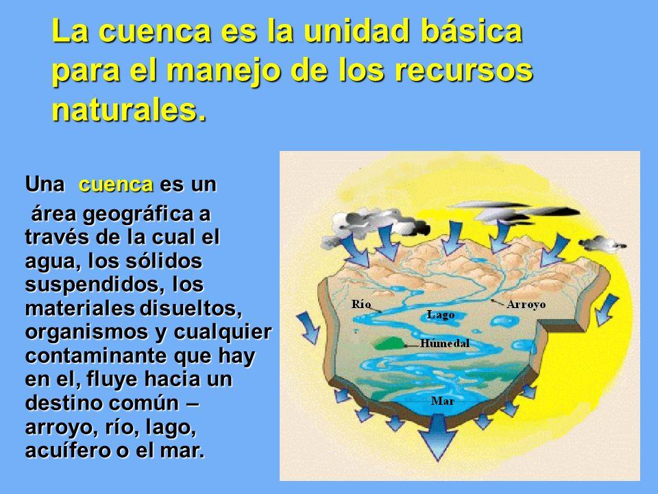 La cuenca es la unidad básica para el manejo de los recursos naturales.