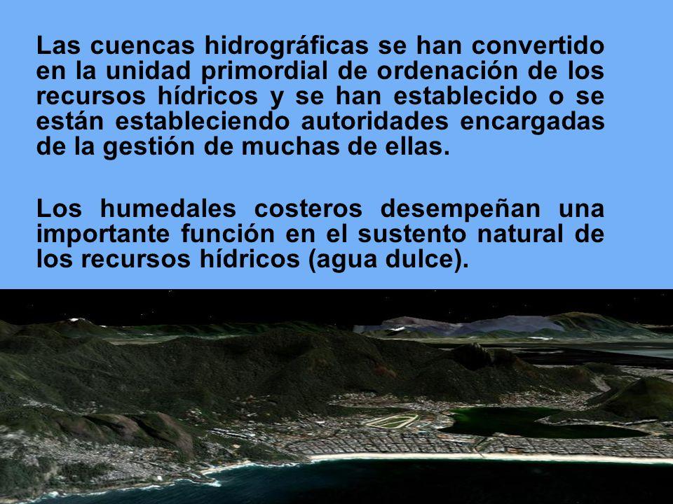 Las cuencas hidrográficas se han convertido en la unidad primordial de ordenación de los recursos hídricos y se han establecido o se están estableciendo autoridades encargadas de la gestión de muchas de ellas.