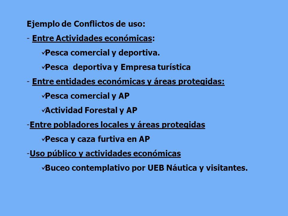Ejemplo de Conflictos de uso: